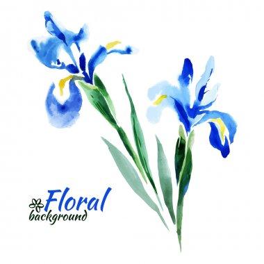 Beautiful watercolor paint blue irises