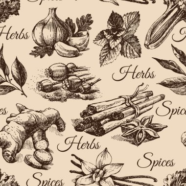 Seamless pattern of kitchen herbs and spices