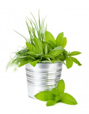 Fresh herbs in metal bucket. Isolated on white background stock vector