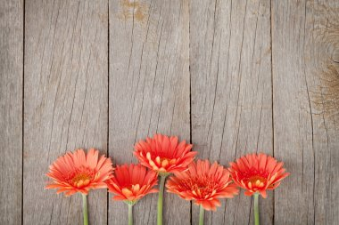 Wooden background with orange gerbera flowers and copy space stock vector