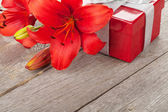 Lily a dárkové krabice