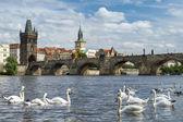 pohled na Karlův most v Praze, Česká republika