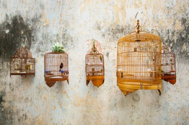 Birdcages with the birds