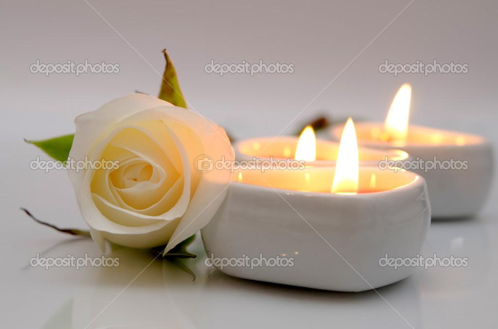 """Résultat de recherche d'images pour """"bougie allumé et rose blanche"""""""