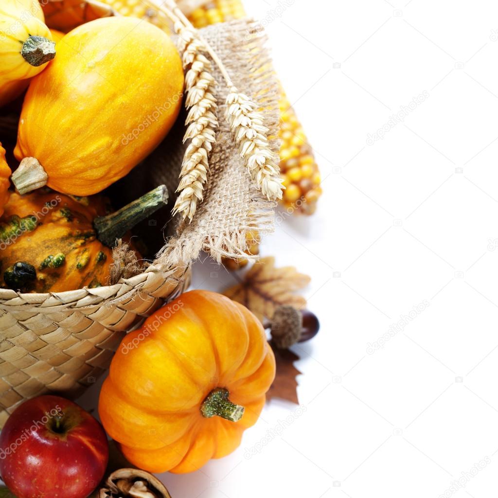Harvest time, pumpkins