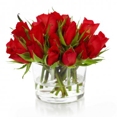Beautiful red roses in a vase isolated on white stock vector
