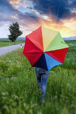Colorful umbrella over a Green Field