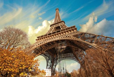 Wonderful street view of Eiffel Tower and Winter Vegetation