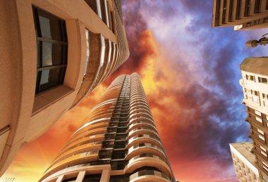 toronto modern binalar ve gökdelen harika yukarı doğru görünümü
