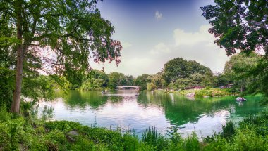 Beautiful panoramic view of Central Park in summer season, NYC