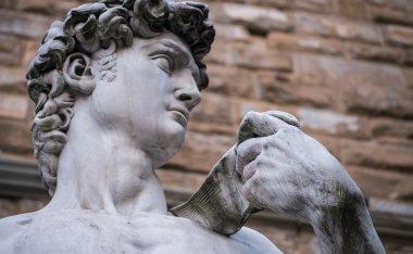 David statue in Piazza della Signoria