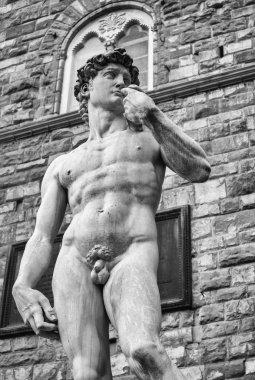 Michelangelo's David in Piazza Della Signoria