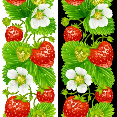 Vector strawberry seamless vertical pattern isolated on background
