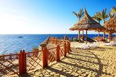 Fotografie pláž na luxusní hotel, sharm el sheikh, egypt