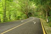 Fotografie asphaltierte Straße im park