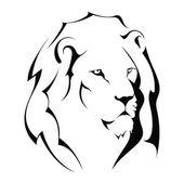 Fotografia testa di leone su sfondo bianco