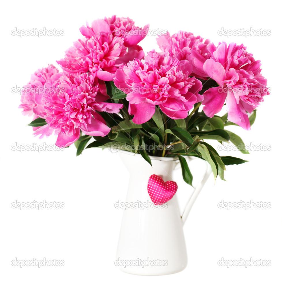rosa pfingstrose blumen in vase stockfoto dasha11 23022122. Black Bedroom Furniture Sets. Home Design Ideas