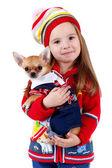 Fényképek Chihuahua and a little girl