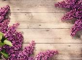 A fából készült háttér gyönyörű lila