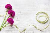Fotografie jarní květiny na dřevěné pozadí