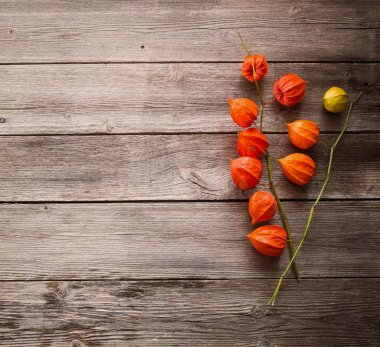 Cape gooseberry on wooden background