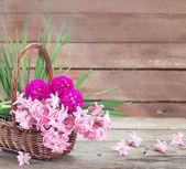 jarní květiny na dřevěné pozadí