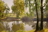krásné letní krajina