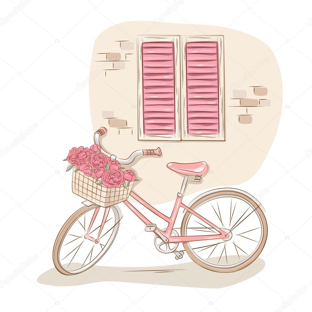 Обои улица, двери, кот, Город, окна, велосипед. Города foto 11
