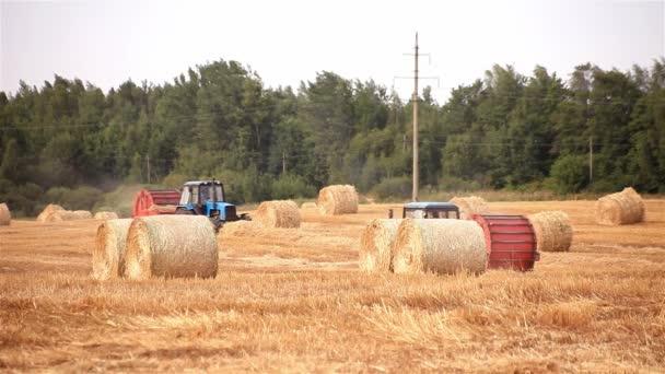 kombajn. traktor dělá balíky slámy