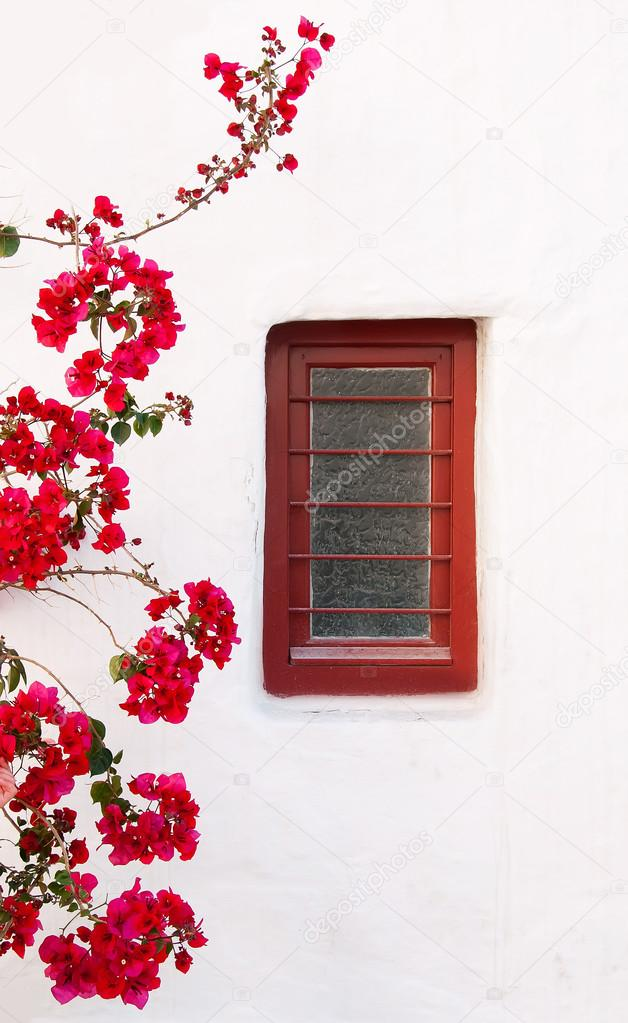 Red box on a white building with beautiful bougainvillea flowers