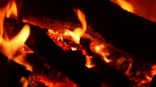 vypálit