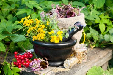 Healing herbs in mortar, herbal medicine