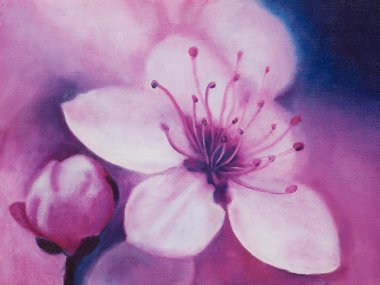 Spring Cherry blossoms, oil painting