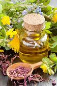 Esenciální oleje a léčivé byliny