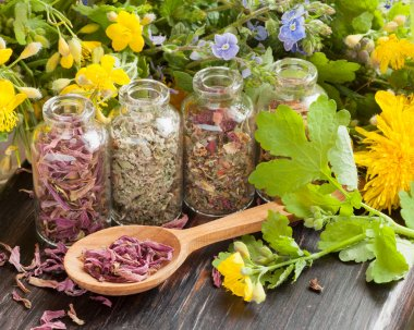 healing herbs in glass bottles, healthy plants and wooden spoon