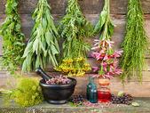 Kytice z léčivých bylin na dřevěné stěně, Malty s sušených rostlin