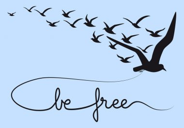 be free text flying birds, vector