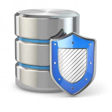 Data security. Database and shield.