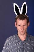 rozzlobený králík