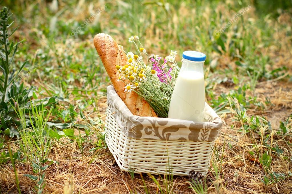 Picnic basket with daisies, bread and milk in the open air