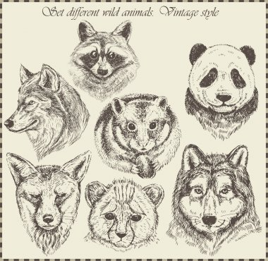 Vector set: different wild animals - various vintage style. stock vector