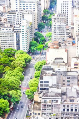 View of buildings and green areas in Sao Paulo, Brazil