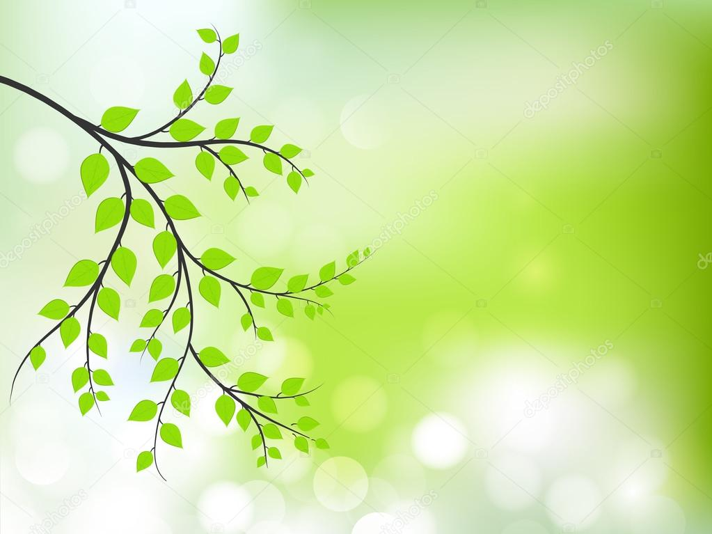 Abstract nature background with fresh green leaves.