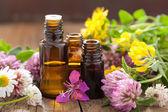 Fényképek Illóolajok és gyógynövények gyógyászati virágok