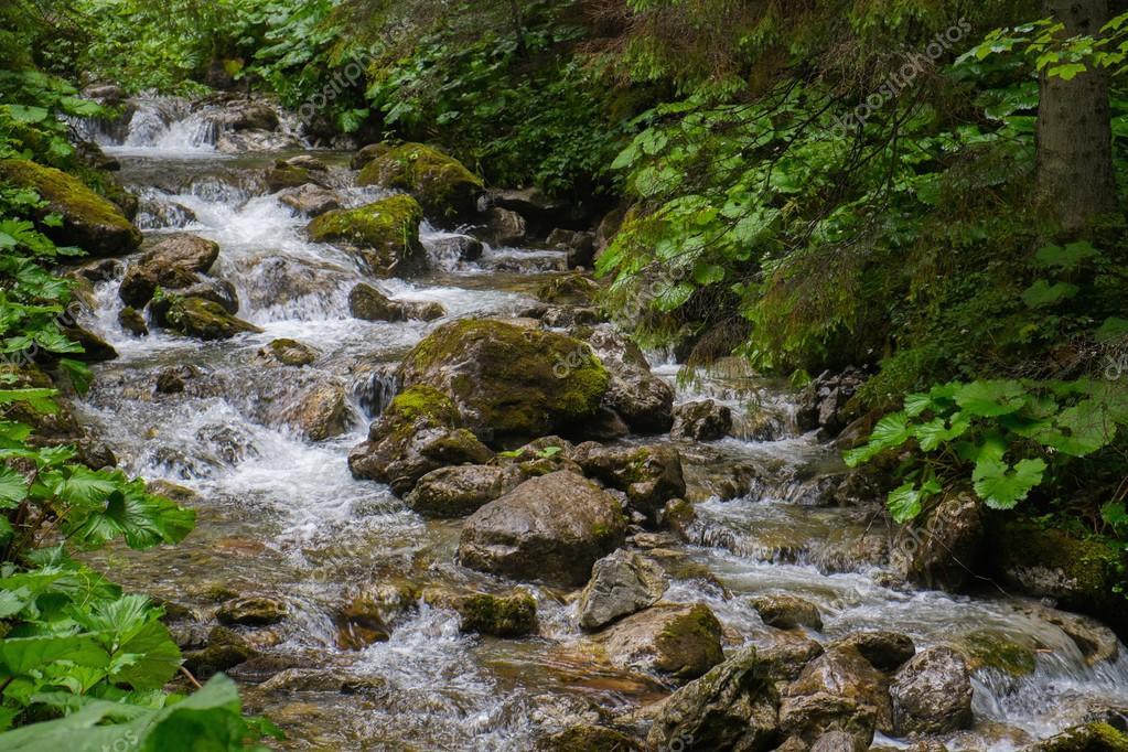 Фотообои Fast mountain river in a forest
