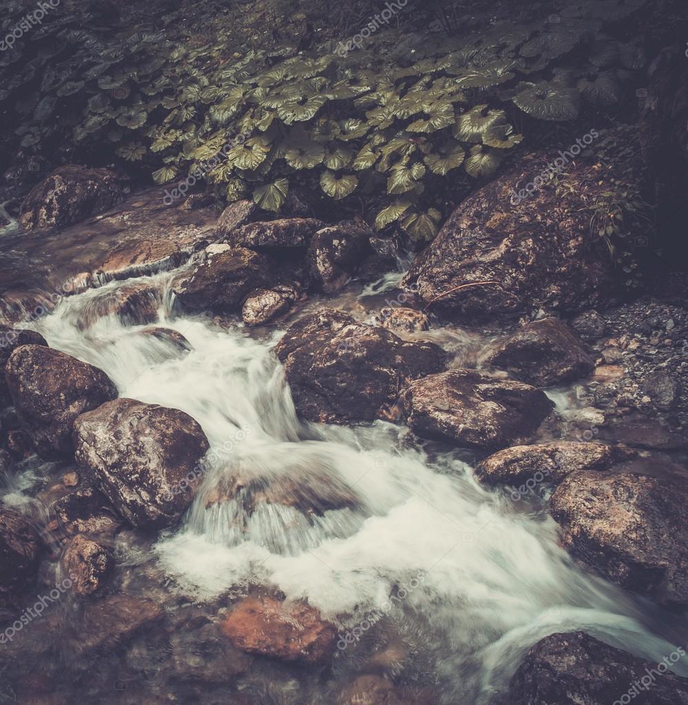 Фотообои Быстрая горная река в лесу
