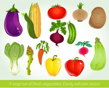 A large set of fresh vegetables. Easily editable vector