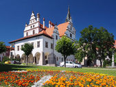 Fotografie květiny a radnice v Levoča, Slovensko