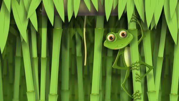 Béka a dzsungelben