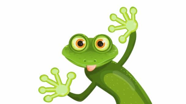Veselé žába